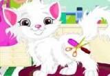 لعبة تنظيف باربي القطة الجميلة