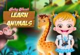 لعبة بيبي هازل رعاية الحيوانات الاليفة