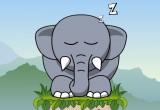 العاب زوما الفيل 2021