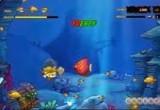 لعبة السمكة الحقيقية